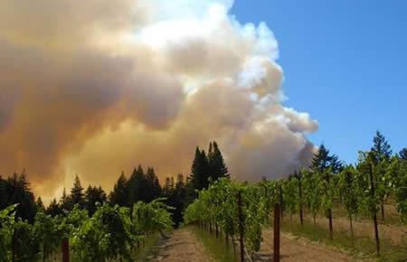 Santa Cruz Mountain Fire Map.Current Fires